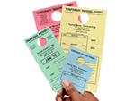 All Temporary Permits