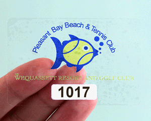 Static cling decal for your beach pass